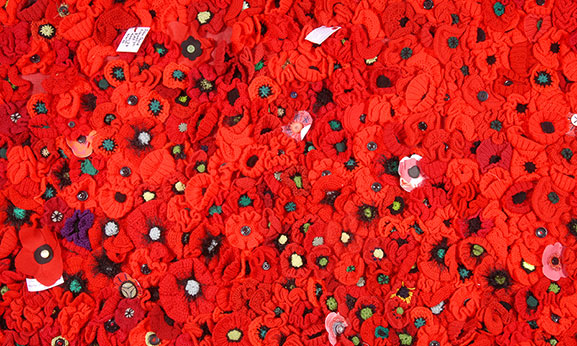 The 5000 Poppies installation at the Air Force Museum in 2015. Image credit: ©Air Force Museum of New Zealand MUS1500553