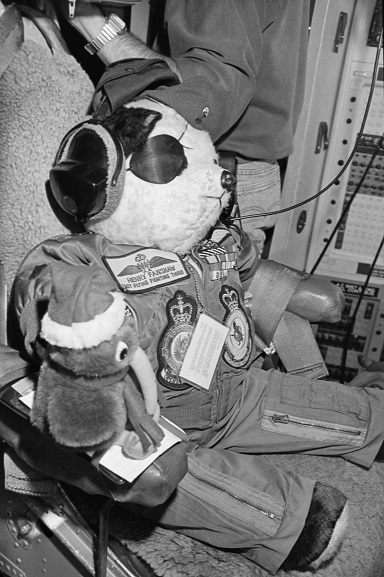 No. 75 Squadron mascot, Henry Fanshaw and a Kiwi, sitting in the Flight Engineer's seat in the cockpit of a No. 40 Squadron Hercules, Riyadh, Feb-Mar 1991. Image ref PD13-30-91, Air Force Museum of New Zealand.